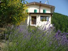 Foto 1 di Bed and Breakfast - Solo Per Quattro